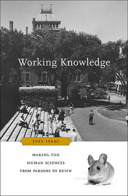 Working Knowledge: Making the Human Sciences from Parsons to Kuhn (Hardback)