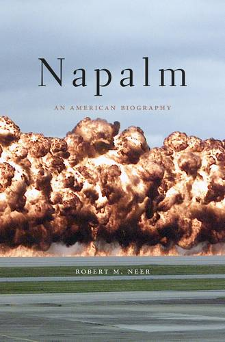 Napalm: An American Biography (Paperback)