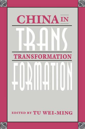 China in Transformation (Paperback)