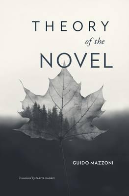 Theory of the Novel (Hardback)