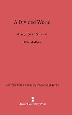 A Divided World (Hardback)