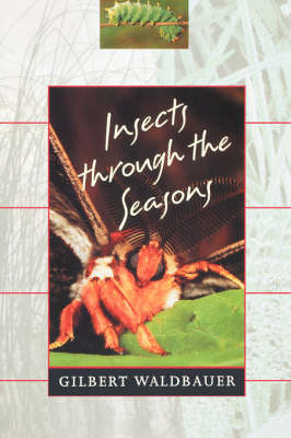 Insects Through the Seasons (Paperback)