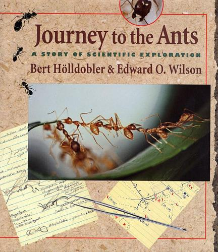 Journey to the Ants: A Story of Scientific Exploration (Paperback)