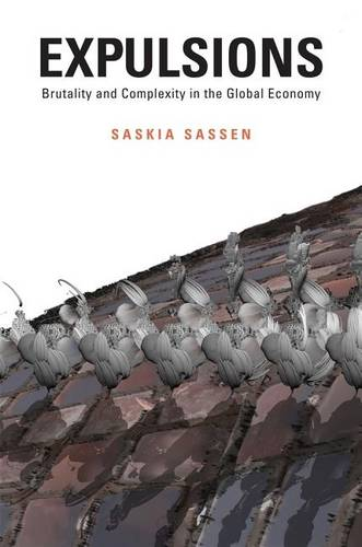 Expulsions: Brutality and Complexity in the Global Economy (Hardback)