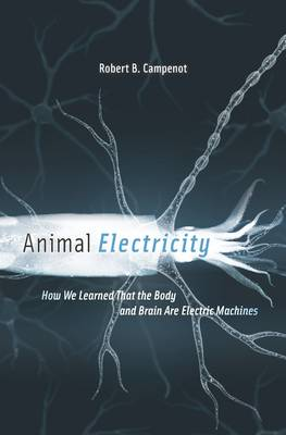 Animal Electricity: How We Learned That the Body and Brain Are Electric Machines (Hardback)