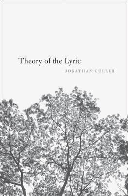 Theory of the Lyric (Hardback)