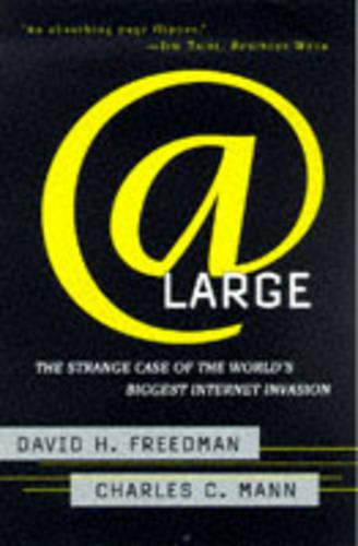 At Large: The Strange Case of the World's Biggest Internet Invasion (Paperback)