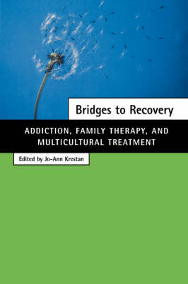 Bridges to Recovery: Addiction, Family Therapy, and Multicultural Treatment (Hardback)