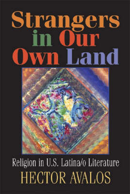 Strangers in Our Own Land: Religion in US Latina/o Literature (Paperback)