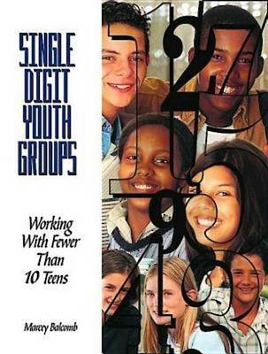 Single-digit Youth Groups: Working with Fewer Than Ten Teens (Paperback)
