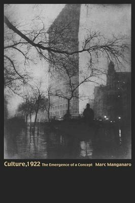 Culture, 1922: The Emergence of a Concept (Paperback)