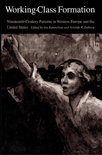 Working-Class Formation: Ninteenth-Century Patterns in Western Europe and the United States (Hardback)