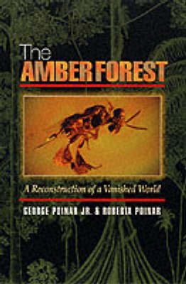 The Amber Forest: A Reconstruction of a Vanished World (Paperback)