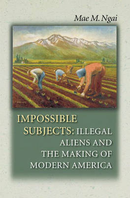 Impossible Subjects: Illegal Aliens and the Making of Modern America - Politics and Society in Twentieth Century America (Hardback)