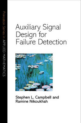 Auxiliary Signal Design for Failure Detection - Princeton Series in Applied Mathematics 11 (Hardback)