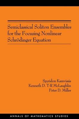 Semiclassical Soliton Ensembles for the Focusing Nonlinear Schroedinger Equation (AM-154) - Annals of Mathematics Studies (Paperback)
