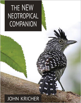 The New Neotropical Companion (Paperback)