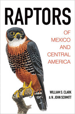 Raptors of Mexico and Central America (Hardback)