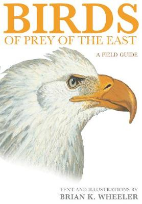 Birds of Prey of the East: A Field Guide (Paperback)