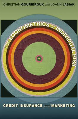 The Econometrics of Individual Risk: Credit, Insurance, and Marketing (Hardback)
