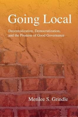 Going Local: Decentralization, Democratization, and the Promise of Good Governance (Hardback)