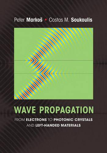 Wave Propagation: From Electrons to Photonic Crystals and Left-Handed Materials (Hardback)
