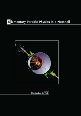 Elementary Particle Physics in a Nutshell - In a Nutshell (Hardback)