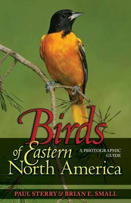 Birds of Eastern North America: A Photographic Guide - Princeton Field Guides (Hardback)