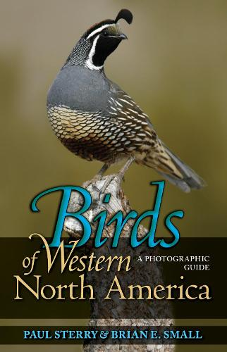 Birds of Western North America: A Photographic Guide - Princeton Field Guides (Paperback)