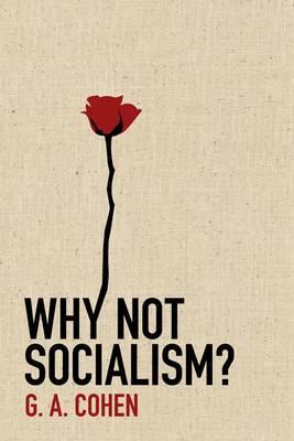 Why Not Socialism? (Hardback)