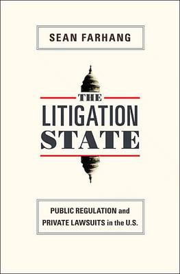 The Litigation State: Public Regulation and Private Lawsuits in the U.S. - Princeton Studies in American Politics: Historical, International, and Comparative Perspectives 115 (Paperback)