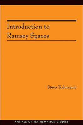 Introduction to Ramsey Spaces - Annals of Mathematics Studies v. 174 (Hardback)