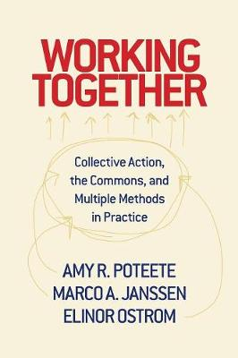 Working Together: Collective Action, the Commons, and Multiple Methods in Practice (Paperback)