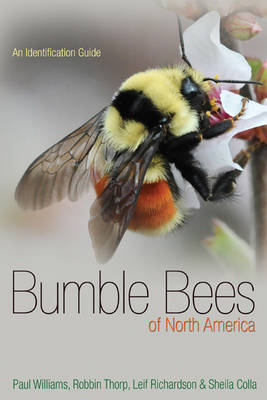 Bumble Bees of North America: An Identification Guide - Princeton Field Guides (Paperback)