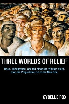 Three Worlds of Relief: Race, Immigration, and the American Welfare State from the Progressive Era to the New Deal - Princeton Studies in American Politics: Historical, International, and Comparative Perspectives 130 (Hardback)