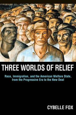 Three Worlds of Relief: Race, Immigration, and the American Welfare State from the Progressive Era to the New Deal - Princeton Studies in American Politics: Historical, International, and Comparative Perspectives 130 (Paperback)