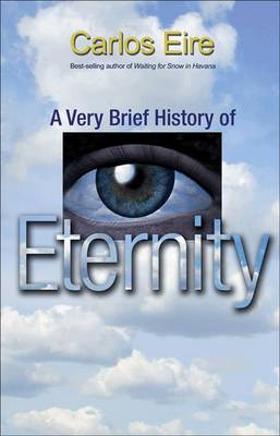 A Very Brief History of Eternity (Paperback)