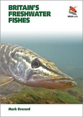 Britain's Freshwater Fishes - Britain's Wildlife (Paperback)