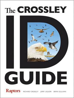 The Crossley ID Guide: Raptors - The Crossley ID Guides (Paperback)