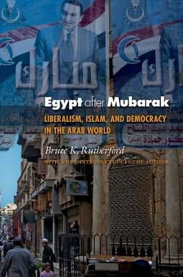 Egypt after Mubarak: Liberalism, Islam, and Democracy in the Arab World - Princeton Studies in Muslim Politics 48 (Paperback)