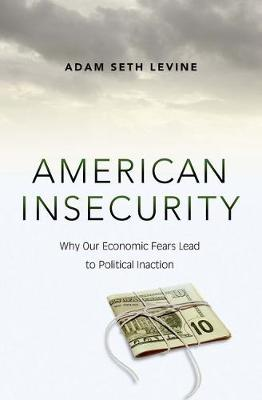 American Insecurity: Why Our Economic Fears Lead to Political Inaction (Hardback)