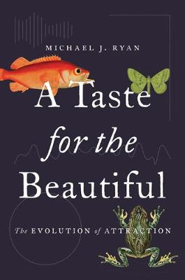 A Taste for the Beautiful: The Evolution of Attraction (Hardback)
