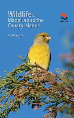 Wildlife of Madeira and the Canary Islands: A Photographic Field Guide to Birds, Mammals, Reptiles, Amphibians, Butterflies and Dragonflies - WILDGuides (Paperback)