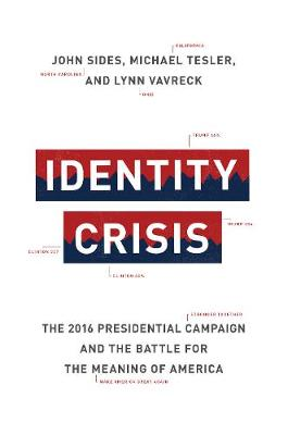 Identity Crisis: The 2016 Presidential Campaign and the Battle for the Meaning of America (Hardback)