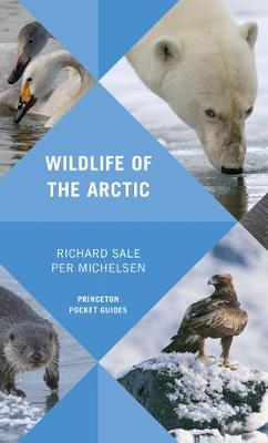 Wildlife of the Arctic - Princeton Pocket Guides 15 (Paperback)