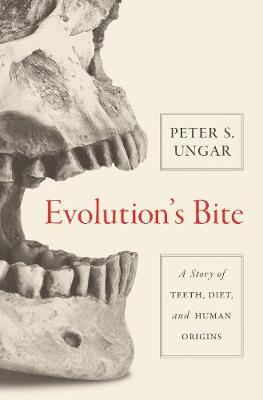Evolution's Bite: A Story of Teeth, Diet, and Human Origins (Paperback)