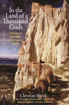 In the Land of a Thousand Gods: A History of Asia Minor in the Ancient World (Paperback)