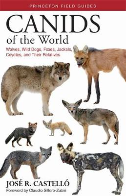 Canids of the World: Wolves, Wild Dogs, Foxes, Jackals, Coyotes, and Their Relatives - Princeton Field Guides 116 (Hardback)