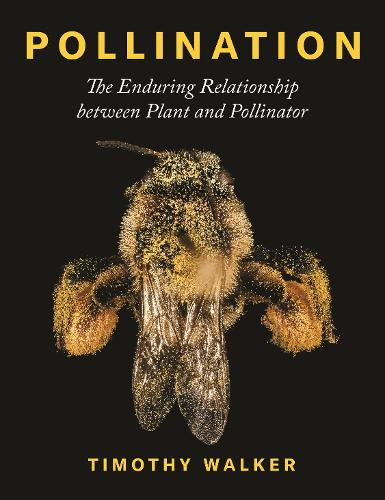 Pollination: The Enduring Relationship between Plant and Pollinator (Hardback)
