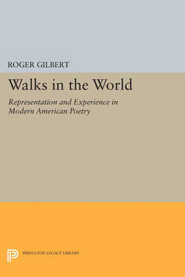Walks in the World: Representation and Experience in Modern American Poetry - Princeton Legacy Library 1155 (Paperback)
